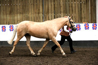 British Appaloosa Society Northern