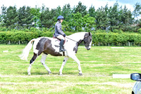 Dressage-11-to-12 (111 of 201)