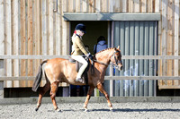 Class 25-BSPS Open (restricted) Pony of Show Hunter type under 122cm