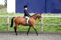 Class 28-Novice Show Pony under 128cm