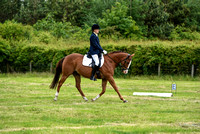 Dressage-12-to-1 (10 of 203)
