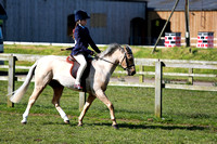 Class 01-Best Pony Club Pony