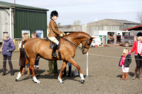 Class 22-BSPS  Open (restricted) Pony of Show Hunter type 143cm-153cm