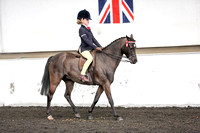 Class 33-Novice Show Pony not exc 128cm