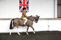 Class 43-Non Native Pony not exc 153cm