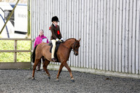 Mini Champ-Show Hunter Pony
