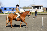 Class 24-BSPS Open (restricted) Pony of Show Hunter type 122cm-133cm