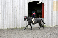 Class 32-Open (restricted) Show Pony 128cms to 138cm