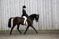 Class 39-Balanced Show Mix Restricted Ridden Part Bred Pony (Welsh, Arab)